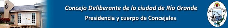 Banner Intitucional Concejo 728x90